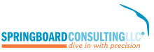 Springboard consulting llc, dive in with precision
